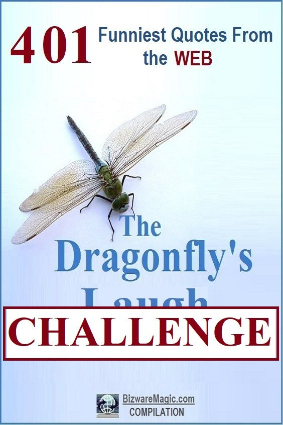 The Dragonfly's Laugh Challenge